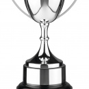 Golf Awards and Cups